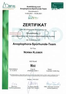 Zertifikat Max Ossiach_20210619